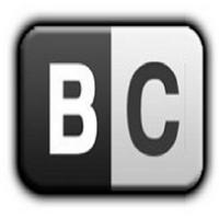 Лого bestchange